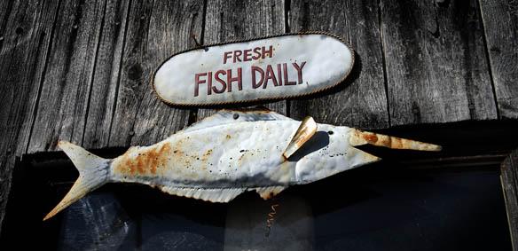 seafood06.jpg