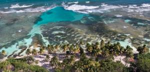 Plage de Bois Jolan en Guadeloupe