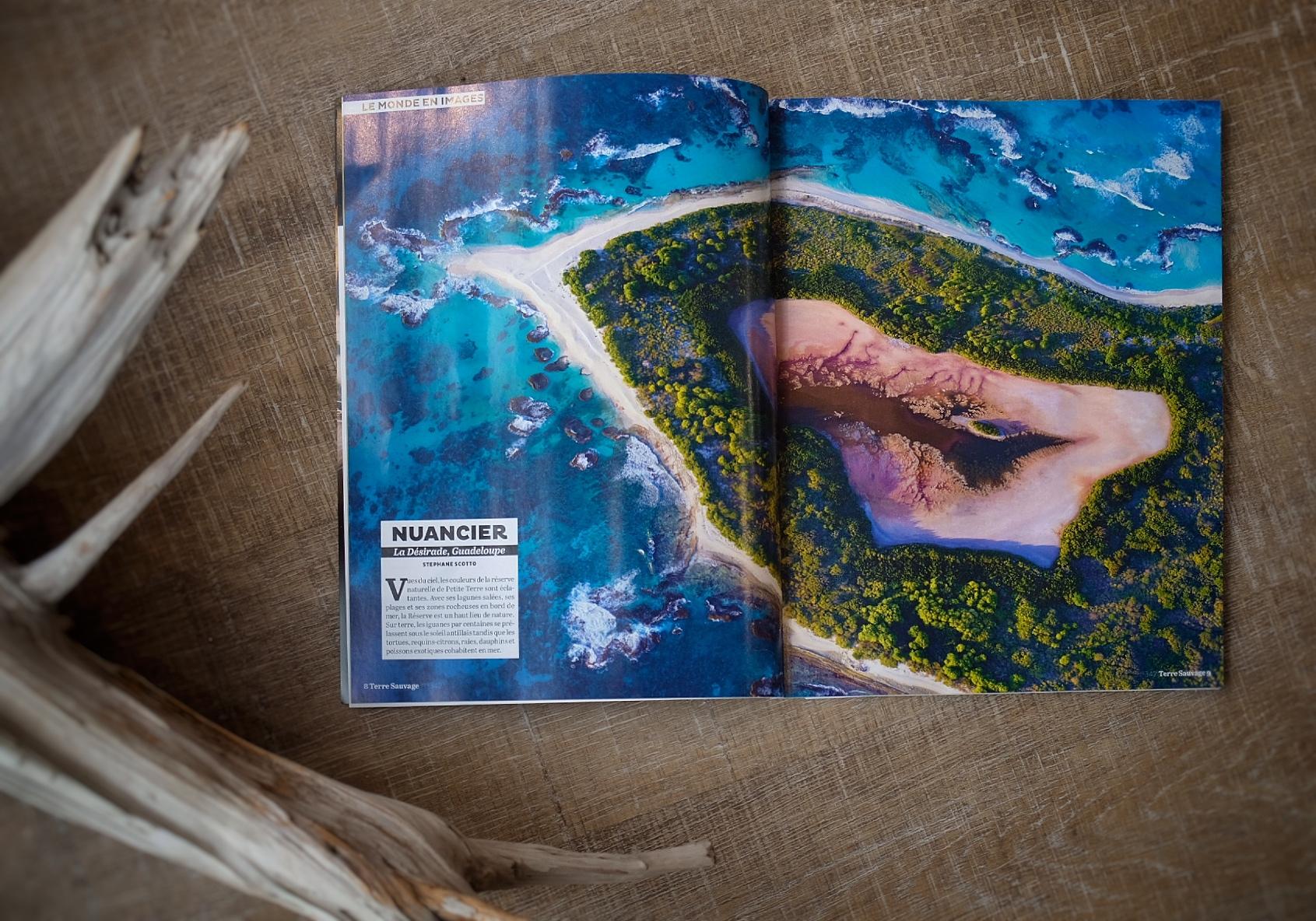 Aprs Les Photos Dillustration Pour Le Dossier Spcial Sentiers Naturels Du Bassin DArcachon Publi En Mai Dernier Cest Au Tour Dune De Mes